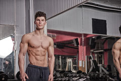 Athletic muscular guy in the gym Stock Photos