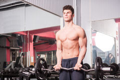 Athletic muscular guy in the gym Royalty Free Stock Photo
