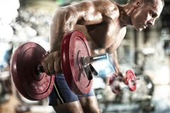 Athletic man training biceps at the gym. Athletic muscular man training biceps at the gym royalty free stock image