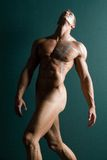 Athletic nude male body builder Stock Photos