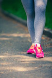 Athletic pair Stock Images