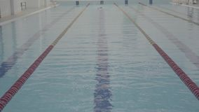 Professional sporty swimmer hardly working out in indoor empty pool swimming across track. Healthy lifestyle. Sports and. Athletic professional swimmer hardly stock footage
