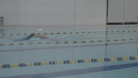 Skill young swimmer hardly working out in indoor pool swimming across track. Healthy lifestyle. Sports and recreation. Athletic professional swimmer hardly stock video