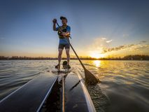 Athletic senior man on paddleboard. Athletic senior man paddling a stand up paddleboard at sunset on a calm lake in Colorado, bow view stock photos