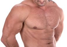 Athletic male body builder royalty free stock photos