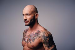 Athletic shaved head male with tattoos on his torso posing over. Studio portrait of shirtless athletic shaved head male with tattoos on his torso posing over Stock Images