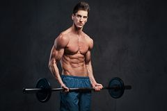 Athletic shirtless male biceps barbell workout. Athletic shirtless male biceps barbell workout over grey background Stock Image