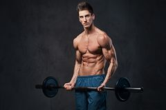 Athletic shirtless male biceps barbell workout. Athletic shirtless male biceps barbell workout over grey background Royalty Free Stock Photos