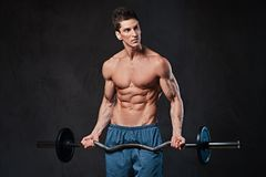 Athletic shirtless male biceps barbell workout. Athletic shirtless male biceps barbell workout over grey background Stock Photography