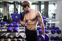 Athletic shirtless young male fitness model holds the dumbbell with light in gym Stock Photography
