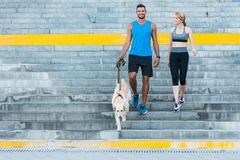 Sports couple walking with dog. Athletic sports couple walking with dog in city at daytime royalty free stock photos