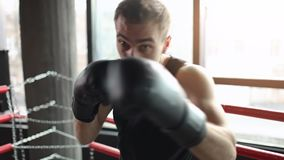 Boxing Forward the Camera. Athletic sportsman wearing black gloves boxing forward to camera in ring stock footage