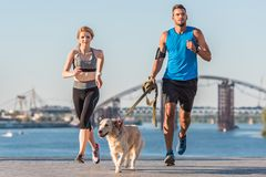 Sports couple jogging with dog. Athletic sportswoman and sportsman jogging with dog in city at daytime stock photography