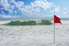 Athletic surfer with board Royalty Free Stock Photo