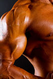 Athletic torso and arm Royalty Free Stock Image