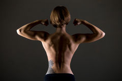 Athletic woman back. Young slim beautiful woman, with perfect body working out, posing, showing back muscles and biceps, body sculpture concept, studio image on stock photography