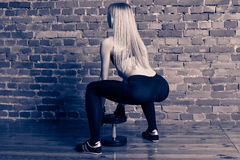 Athletic woman in black leggins performing deadlift with dumbbe Royalty Free Stock Photography