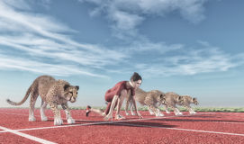 Athletic woman with a cheetah Royalty Free Stock Image