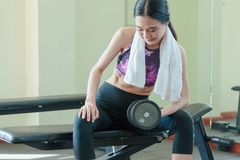 Athletic woman doing an exercise with a dumbbell on a spor. Young athletic woman doing an exercise with a dumbbell on a sports bench Stock Photos