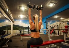 Athletic woman doing exercises in gym lifting dumbbells. Athletic woman doing exercises in the gym lifting dumbbells, sport training bodybuilding Stock Photography