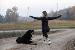 Woman doing stretching exercises. An athletic woman doing stretching exercises. Morning gymnastics with dog royalty free stock photo