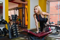 Athletic woman is engaged in a gym with dumbbells on the bench for pressurizing the back muscles. royalty free stock images
