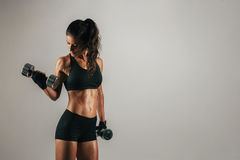 Athletic woman lifting chrome weights Royalty Free Stock Photography