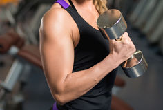Athletic woman pumping up muscles with dumbbells Stock Photography
