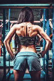 Athletic woman showing muscles of the back Stock Image