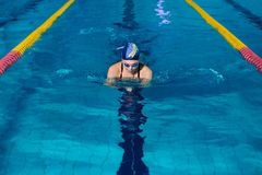 Woman swimming with swimming hat in swimming pool royalty free stock image