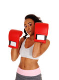 Athletic woman wearing boxing gloves. Royalty Free Stock Image