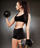 Athletic woman working out with dumbbells Stock Photos