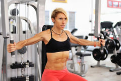 Athletic women training chest on a simulator at gym Royalty Free Stock Image