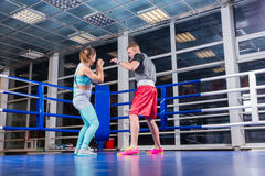 Athletic young couple in sportswear engaged in boxing in regular Stock Image