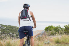 Athletic young man mountain biking Stock Image