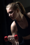 Athletic young woman doing a fitness workout with dumbbells Stock Image