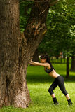 Athletic young woman stretching near big tree on summer day Stock Images