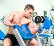 Athletically built sportsman in the gym Stock Image