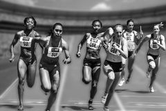 Athletics, Sports, Black And White, Race Royalty Free Stock Images