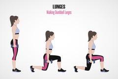 Athletische Übungen Übungen mit freiem Gewicht Gehende Dummkopf Laufleinen Illustration eines aktiven Lebensstils Übung für schön lizenzfreie abbildung