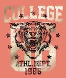 Athletische Abteilung des Tigers lizenzfreie abbildung
