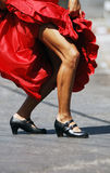 Athletische Fahrwerkbeine des Flamencos lizenzfreie stockbilder