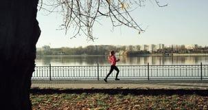 Athletische Frau, die morgens bei Sonnenaufgang ausarbeitet Rütteln über einer Brücke nahe dem See Langsame Bewegung Dji-ronin stock video footage