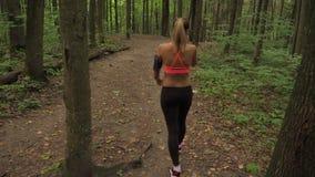 Athletische Frau geht ruhig einen Waldweg entlang, gekleidet für das Rütteln stock footage