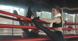 Athletische Schönheit tut Stoß-UPS als Teil ihrer Quereignung, bodybuildendes Turnhallen-Trainings-Programm stockbild