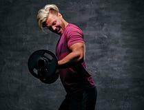 Athletischer blonder Mann, der ein Bizepstraining mit einem Barbell tut Stockfotos