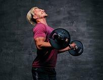 Athletischer blonder Mann, der ein Bizepstraining mit einem Barbell tut Lizenzfreies Stockfoto