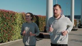 Athletischer Mann und Frau tun Lauf im Park am Sommertag und halten Sitz stock footage