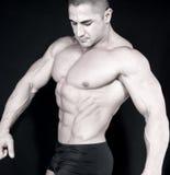 Athletischer reizvoller attraktiver Erbauer der männlichen Karosserie lizenzfreie stockbilder