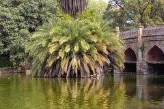 Athpula. At Lodi Gardens, New Delhi, India Stock Images